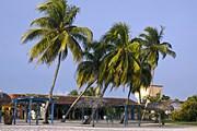 Куба приглашает в национальные парки. // Travel.ru