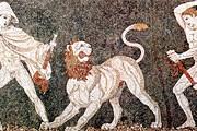Фрагмент мозаичного панно, найденного в Пелле. // wikipedia.org