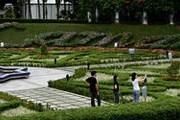 Лучшие сады Малайзии ждут туристов. // malaxi.com