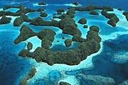 Марианские острова - архипелаг на западе Тихого океана. // artdiving.ru
