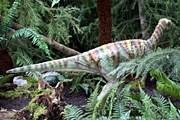 Динозавры выглядят как живые. // dinosaursunleashed.co.uk