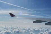 Asiana названа лучшей авиакомпанией мира. // Travel.ru