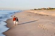 Куперс-Бич - лучший пляж США. // drbeach.org