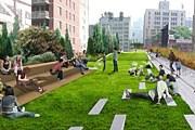 Парк расположен на высоте 9 метров над землей. // fastcompany.com