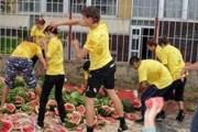 Бои арбузной мякотью - в числе развлечений на фестивале. // admkamyshin.info