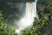 Гайана сохранила уникальные тропические леса. // propertyworld.com