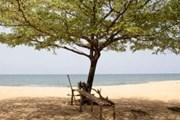 Сейчас пляжи страны практически не посещаются туристами. // sierraleone.tribewanted.com
