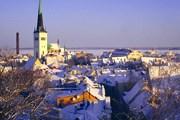 Таллин приглашает в зимнюю сказку. // tourism.tallinn.ee