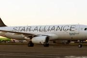 Самолет альянса Star Alliance // Travel.ru
