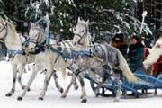 Дед Мороз родился в Вологодской области. // dedmorozz.ru