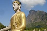 В садах Лумбини - тысячи статуй Будды. // myanmars.net