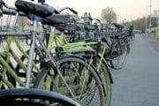 В городе будет открыто 29 велостоянок. // theenvironmentalblog.org