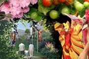 Floriade - праздник цветов и искусства. // floriade.com