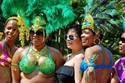 День открытых дверей в посольстве Тринидад и Тобаго. // culturaltourismdc.org
