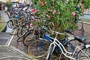 Велосипеды станут частью общественного транспорта. // utilitycycling.org