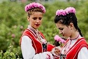 Цветы собирают ранним утром. // silkyholidays.com