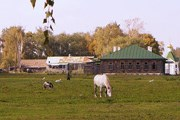Родина Есенина станет комфортнее для туристов. // venividi.ru