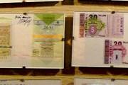 В музее представлены талончики из разных городов и стран. // Дмитрий Янчишен