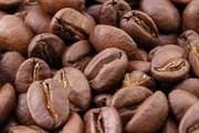 Новая кофейная экскурсия появится в Латинской Америке. // Wikipedia