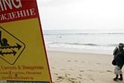 Предупреждающие знаки продублированы на русском языке. // phuketwan.com