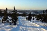Отель откроется на норвежском горнолыжном курорте Трюсиль. // tripadvisor.com