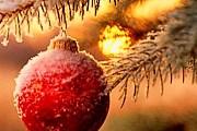 Новогодний отдых в Крыму подорожает. // webznanie.net