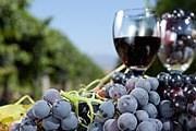 Виноделы, пивовары и фермеры Австралии – на фестивале еды и вина. // iStockphoto / fatihhoca