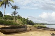 Суринам - рай для любителей уединения. // nationsencyclopedia.com
