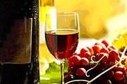 Музей вина станет новой достопримечательностью региона. // ciracar.com