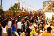 Фестиваль собирает множество гостей. // cyprusweathermap.com