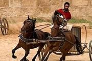 Посетители увидят гонки на колесницах. // dailymail.co.uk