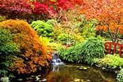Японский сад в Ванкувере // Diomedia