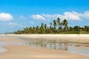 Пляжи Гоа привлекают и зимой, и летом. // istockphoto.com