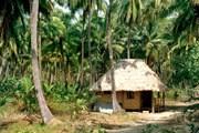 Туристам открыты не все Андаманы и Никобары. // Alamy