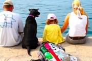 Туристы нередко отдыхают всей семьей. // globalanimal.org