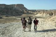 Фестиваль позволяет взглянуть на Израиль по-новому. // walkaboutlove.org.il