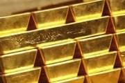 Туристам предложат попробовать добыть золото. // marketwatch.com