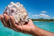 Маврикий нравится туристам. // GettyImages