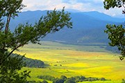 Природа Адыгеи привлекает туристов. // business-kuban.ru