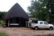Сафари-лагерь находится в парке Чобе. // senyatisafaricamp.com