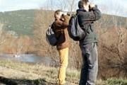 Наблюдение за птицами привлекает туристов. // Travel.ru
