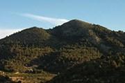 Экскурсия пройдет по парку Сьерра-де-Кипар. // panageos.es