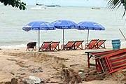 Ливни вымыли песок с пляжа. // Pattayaone.net