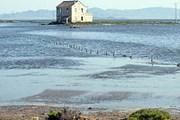 Прибрежный природный парк ждет гостей. // Wikipedia
