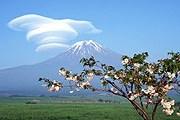 Япония манит туристов. // wallpaperpress.com