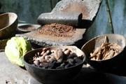 Посетители узнают всё о шоколаде и какао. // festivaldelchocolate.mx