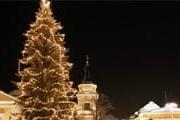 В Тампере установлена новогодняя елка. // joulutampere.fi