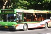 Автобус в Сочи // Travel.ru