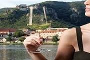 Вина Вахау славятся по всему миру. // lower-austria.info