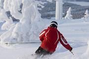 На многих курортах снега более чем достаточно. // levi.fi